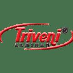 triveni logo
